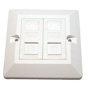 CAT5e Dual Port Faceplate with 2 Modules